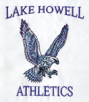 Eagle_1 embroidery digitizing sample