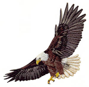 Eagle_4 embroidery digitizing sample