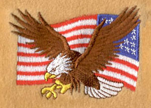 Eagle_7 embroidery digitizing sample