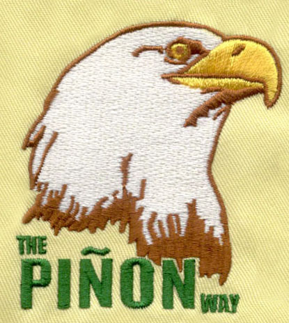 Eagle_5 embroidery digitizing sample